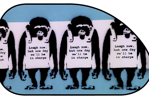 "Shaped Side Sunshade - ""Laugh Now"" (66x38cm)"