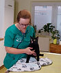 Tierärztin Anja Eigenseer bei der Untersuchung einer Katze, Tierarzt Leipzig Zentrum, Tierarzt Leipzig Zentrum West, Tierärzte Kolonnadenviertel