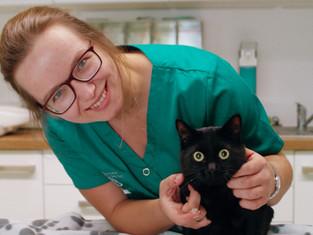 Tierärztin Anja Eigenseer mit schwarzer Hauskatze, Tierarztpraxis Kolonnadenviertel