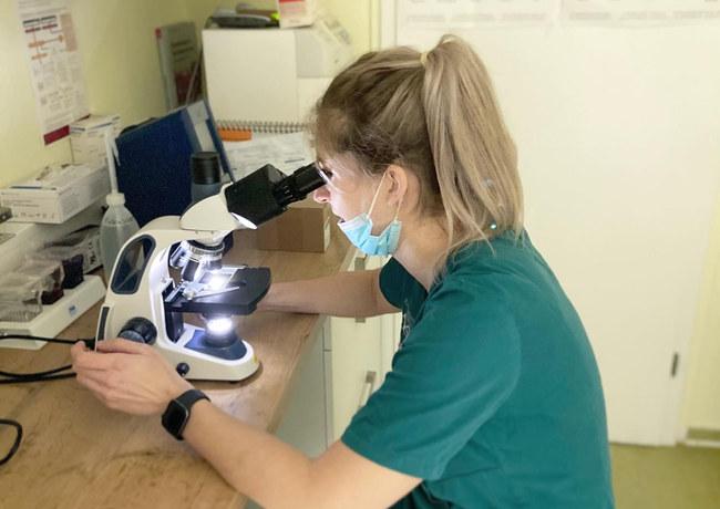 Mikroskop Labor Bereich