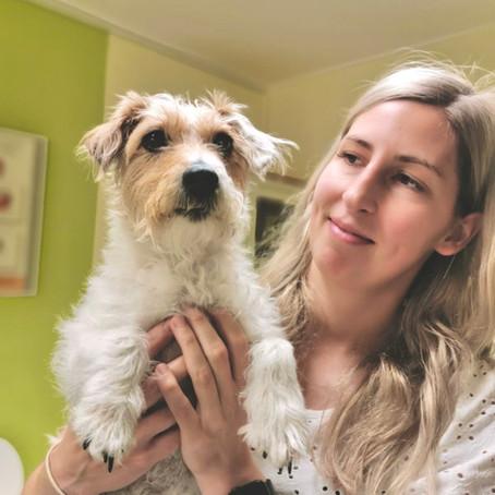 Impftiterbestimmung beim Hund