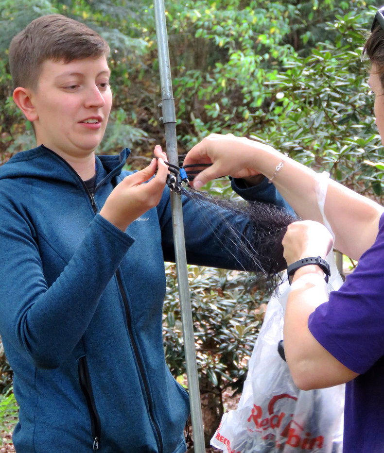 At the banding course in 2019 new banders learn to set the nets.