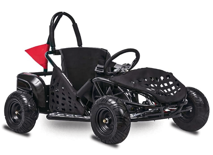 FITRIGHT 2020 79cc 2.5 HP, 4 Stoke Go Kart, Racing Go Cart for Kids with Foot Pedal and Foot Break.
