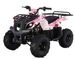 SmartDealsNow Powersports TAO Youth ATV Quad with Reverse.