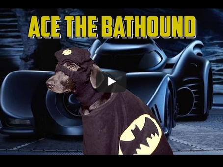 Sketch From Superheroes: Ace The Bathound