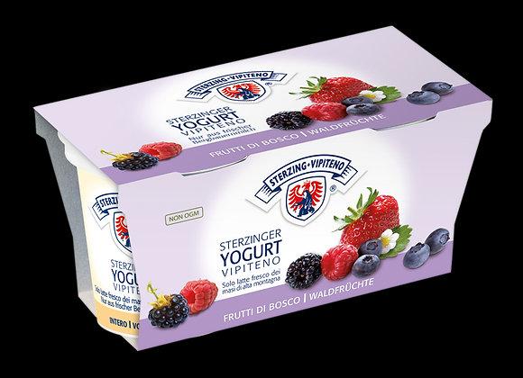 2 Yogurt Frutti Bosco Vipiteno
