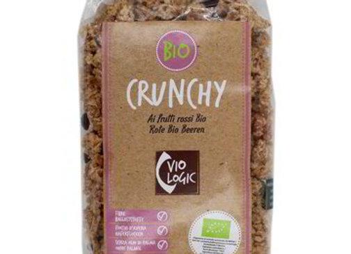 Crunchy Croccante Frutti Rossi Bio Viologic 375gr