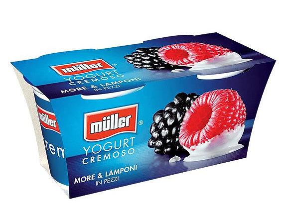 2 Yogurt More Lamponi Muller