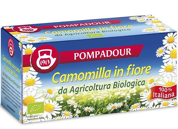 Camomilla Pompadour (15 buste)