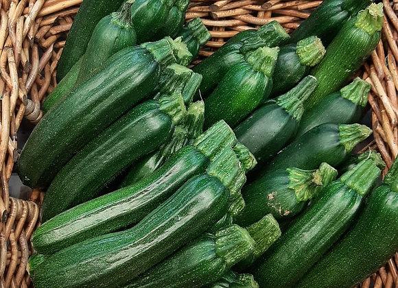 Zucchine Scure (Italia)