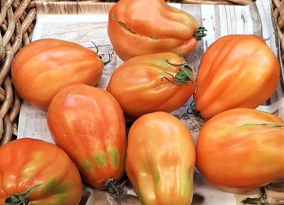 Pomodori Cuore di Bue (Italia)