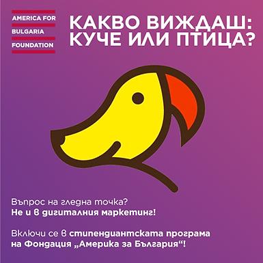 Стипендиантска програма: Дигитален маркетинг за значими каузи, Америка за България