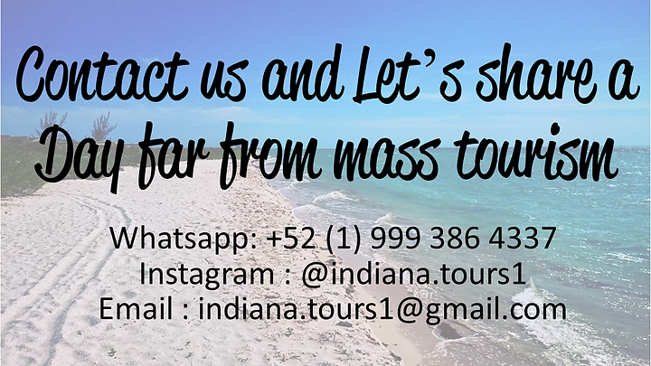 Indiana Tours - contact us.png
