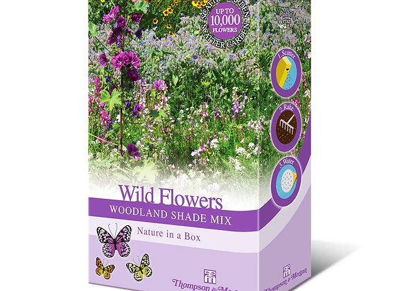 Free AirWick Wildflowers Seeds
