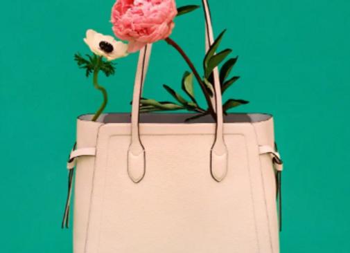 Free Kate Spade Hand Bag