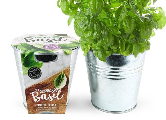 Free Basil Seed Kits