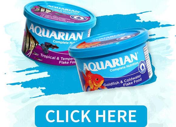 Free AQUARIAN Flake Fish Food