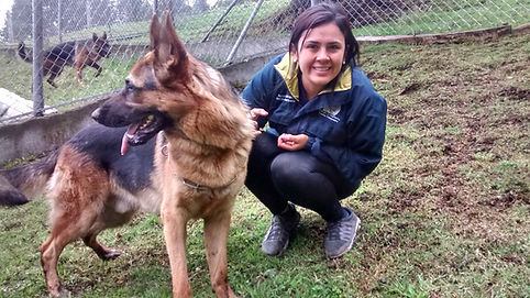 Shelter Adoption Training
