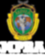 MPRA-logo-color.png