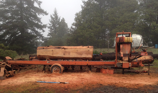 Milling redwood on professional mill