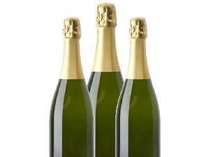 BoutiqueRCTNoel-Champagne-350x250.jpg