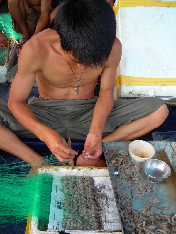 Preparing lures