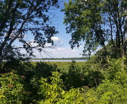 Eagle Lake South - July 2020