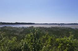 Eagle Lake South - June 2020