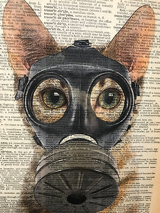 Fallout Kitty Dictionary Print