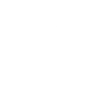 Wild Seedlings Play space Design Logo -