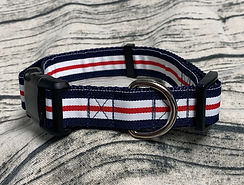 red blue nautical stripe2.jpg