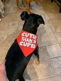 cuter than cupid.jpg
