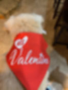 his valentine2.jpg
