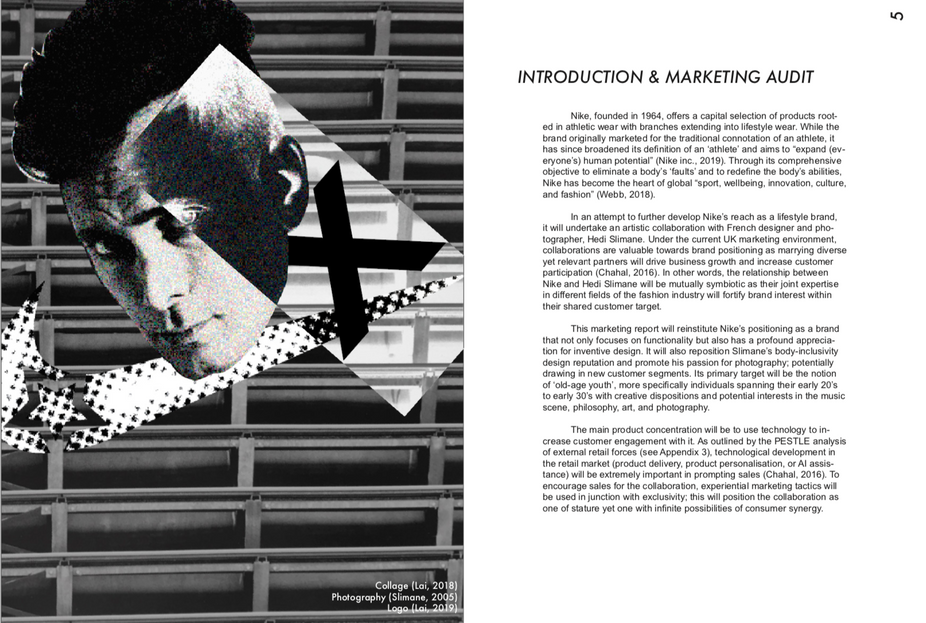 Introduction and Marketing Audit