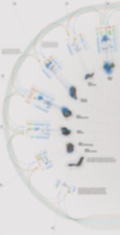 Programa Seguimiento Cambio Global Sierra Nevada. Estaciones de Monitoreo Intensivo. METODOLOGÍAS DE SEGUIMIENTO