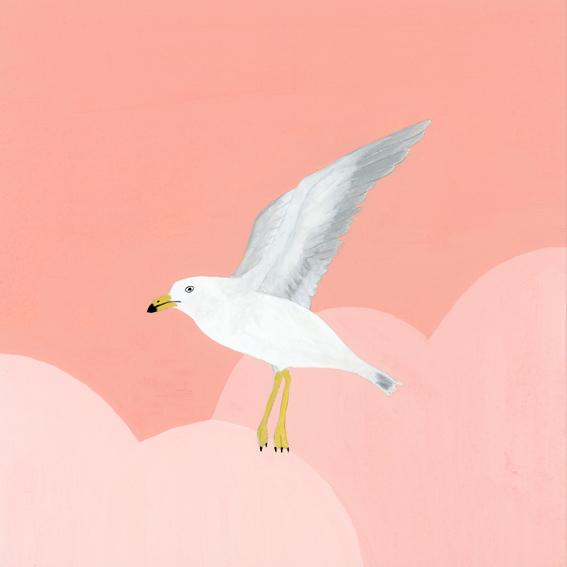 カモメ、ピンクの空を飛ぶ © mina chape