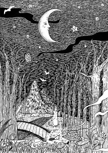 FRAPBOIS  2012 moon