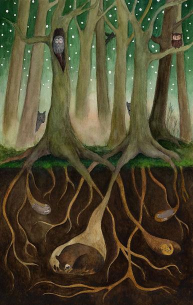 FRAPBOIS 2014 roots forest