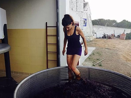 A wine maker doing her thang!