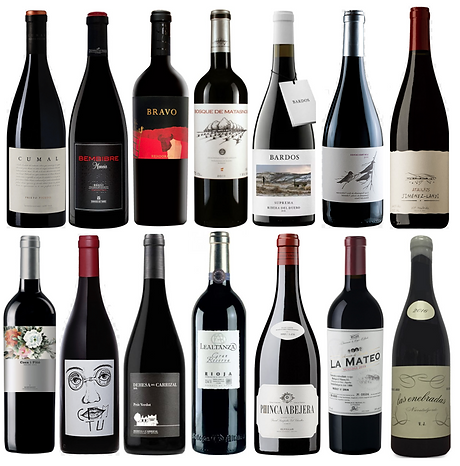 Premium Spanish Wines - Buywines.png