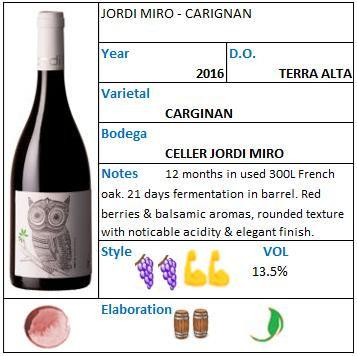 Jordi Miro Carignan.jpg