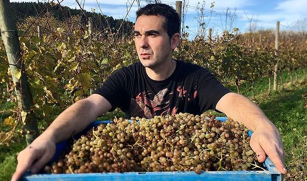 Oxer Bastegieta Wine Rioja.jpg