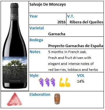 SALVAJE de Moncayo proyectos de garnacha