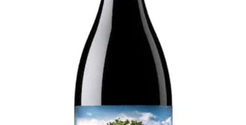 Salvaje del Moncayo', Garnacha, Spain 6 pack was $33 Now $21.45