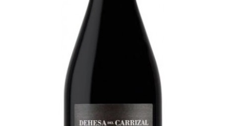 2013 Dehesa del Carrizal Petit Verdot  was $73 NOW $51.10