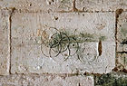 The Witches Marks-1.jpg