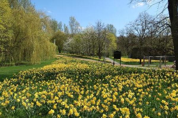 Dowding Park.JPG