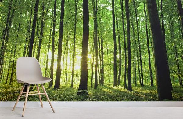 breaking-light-green-forest-room-825x535