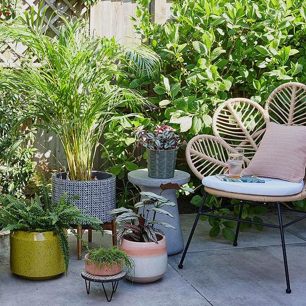 rented-garden-ideas-3.jpg