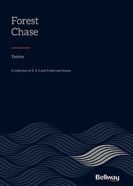 Forest Chase Cover.jpg